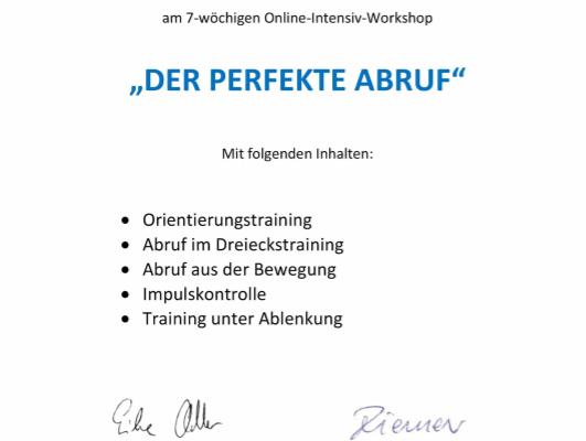 Zertifikat_Perfekter_Abruf